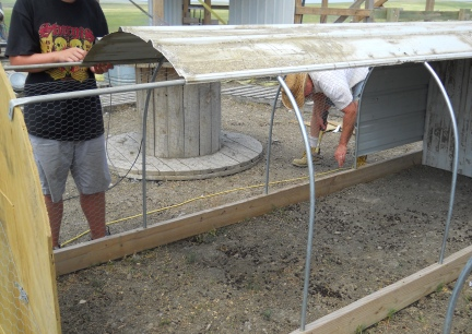 Chicken Tractor Balck and Deron 7-11